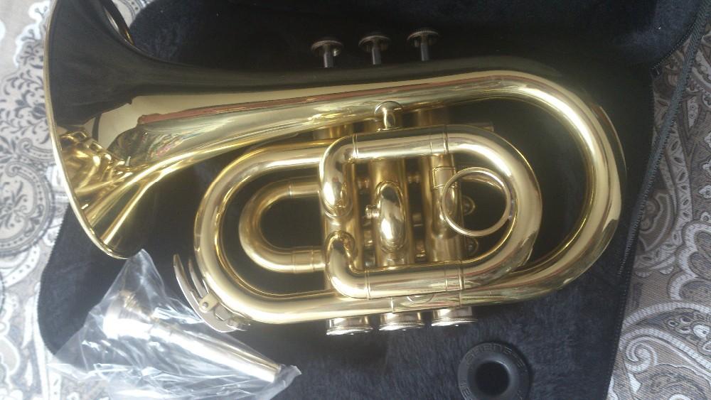 роскошный труба ББ карман с пеной случай подгонянные ваши собственные инструменты