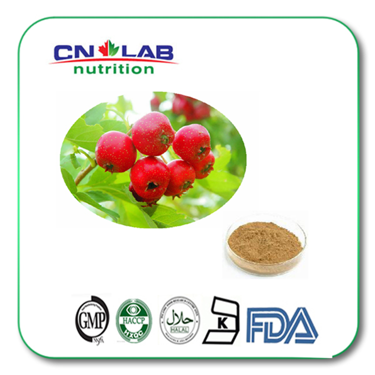 facoty supply plant extract powder Natural Hawthorn berry extract powder for skin care 1kg/lot chinese new harvest hawthorn extract hawthorn berry extract flavone 600g