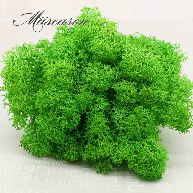10g Landscape Artificial Everlasting moss plant eternal grass garden home decor DIY flower material garden micro accessories