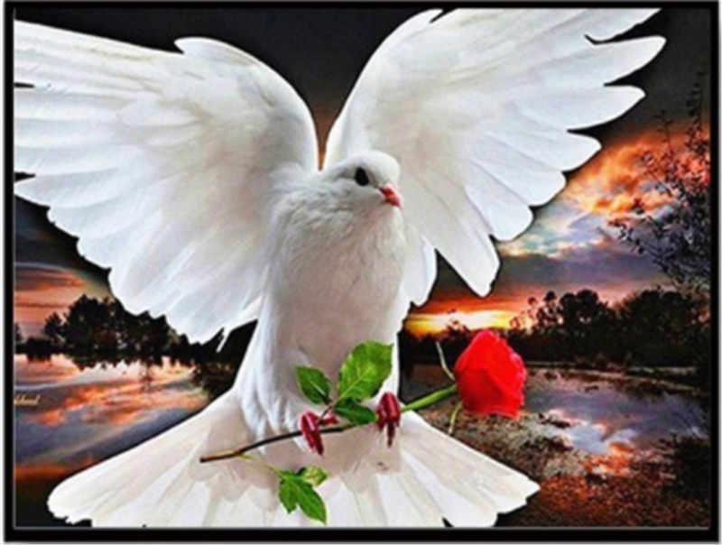 2019 Новое поступление Алмазная вышивка голубь мира Вышивка крестиком Картина бисером с цветами цветочный полный квадратный/Мозаика из круглых бриллиантов