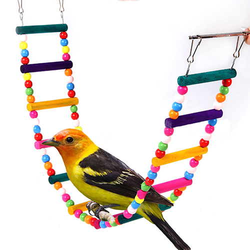 Bird Toy Outlet : Compare prices on ladder online shopping buy low price