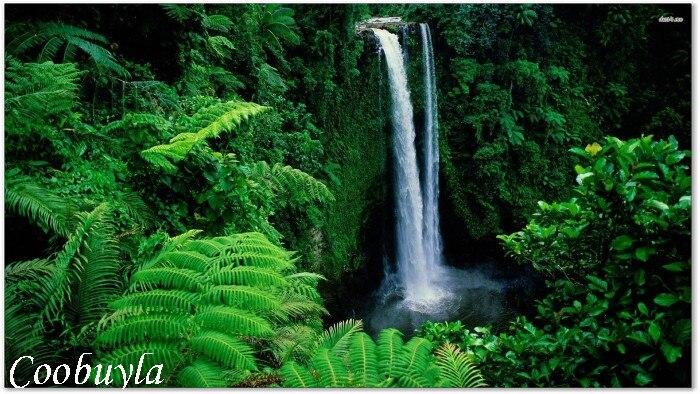 Top Quality Large Realistic Nature Landscape Oil Painting Fuipisia