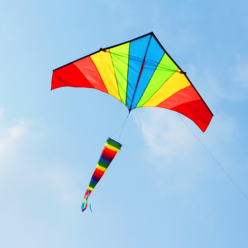 Купить с кэшбэком free shipping high quality rainbow windsock kite line ripstop nylon fabric outdoor toys flying bird kites kids reel beach fun