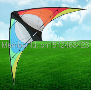 Free Shipping Outdoor Fun Sports 2015 New 2m Rainbow Power Stunt Kite Entry-Level For Beginner Good Flying