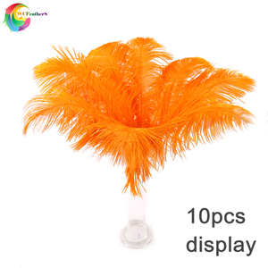 Image 2 - Оптом 10 шт./лот детские розовые страусиные перья для рукоделия 35 40 см карнавальные костюмы для вечерние НКИ дома Свадебные украшения Шлейфы