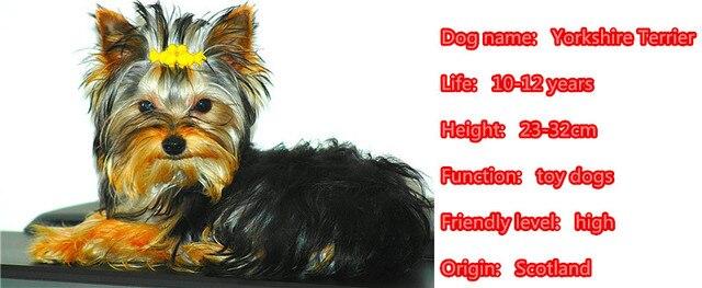 Купить йоркширского терьера животных подвеска для кошелька и сумочки картинки