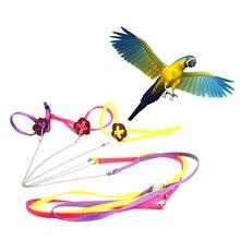 ПЭТ полезный попугай шлейка для птицы и поводок регулируемый свет Мягкая Мода Случайный цвет птицы инструменты