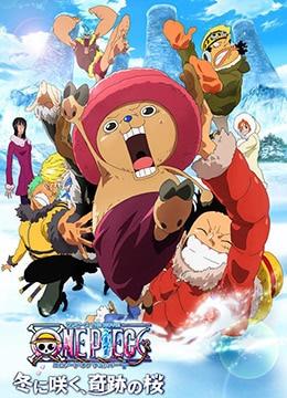 《海贼王剧场版9:冬季绽放的奇迹之樱》2008年日本动画,动作,喜剧动漫在线观看