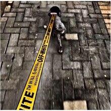 Оптовая продажа 1,6 м нейлоновый поводок для собак шнурок-веревка ВЫКЛ. белый модный поводок для домашних животных для французского бульдога маленькая собака