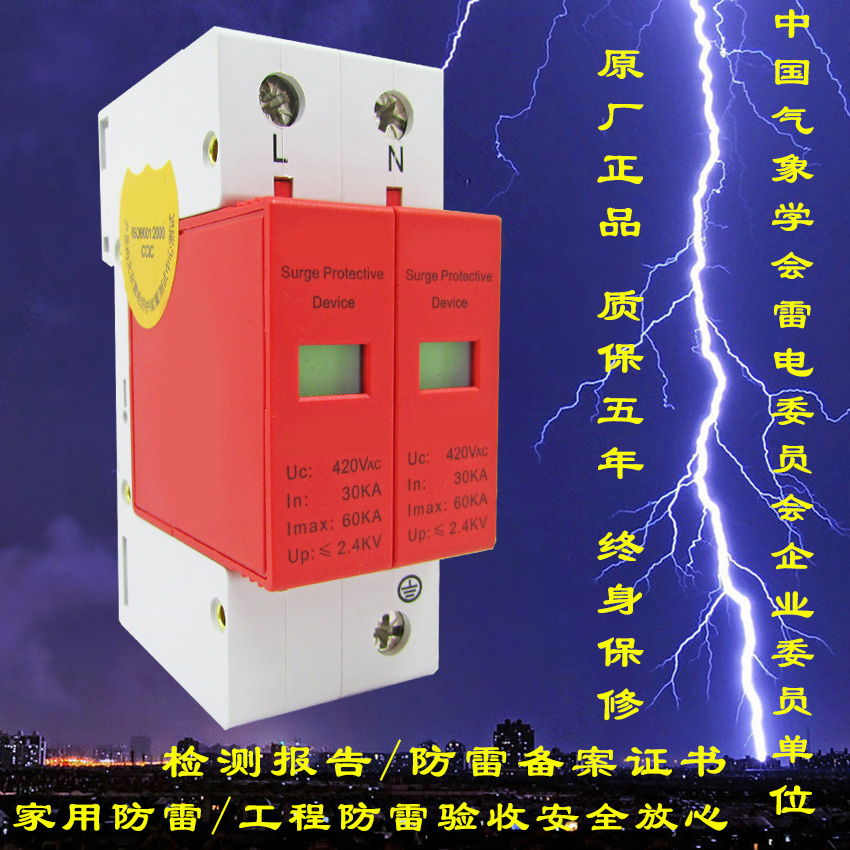Primary 60KA Single Phase Power Lightning Protection Module 220V Power Arrester Surge Protector 2P