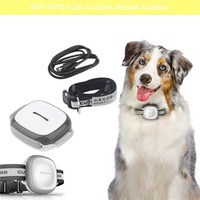 Hot Intelligent Wireless Pet Finder GPS Waterproof Pet Dog Cat Accurate Collar Anti Lost Security Tracker Locator Device