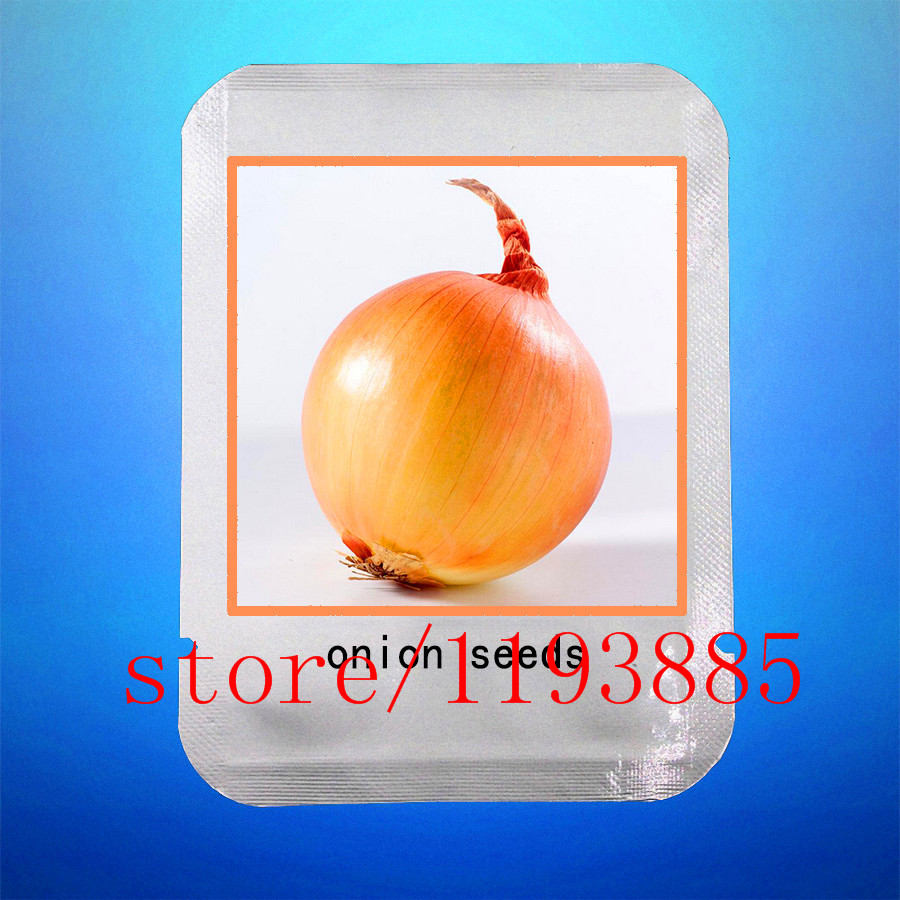 100 ONION seeds Yellow Sweet Spanish seeds professional makeup vegetable seeds germination 95%