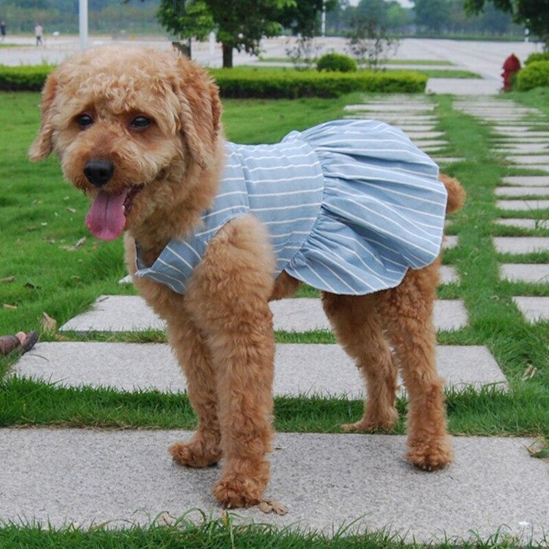 Summer Dog Clothes Dog Dress Dot Prined Dress For Pet Clothes HOOPET Pet Dog Clothes Small Dog Youth Campus Sailor Suit