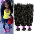 Rosa Hair Products Brazilian Kinky Curly Virgin Hair Bundle Deals Brazilian Virgin Hair Bundles 4PC Queen Human Hair Extensions