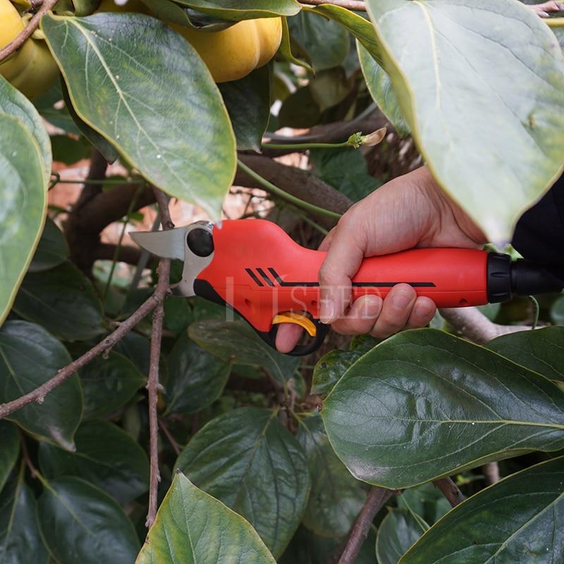 Kaltinių ašmenų sodo sodo genėjimo žirklės (CE sertifikatas - Sodo įrankiai - Nuotrauka 3