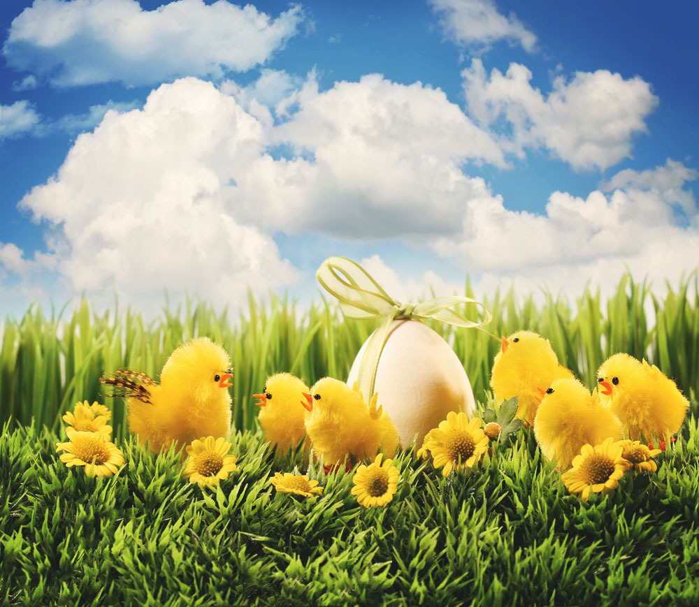 10x10ft Easter Theme Vinyl  Photography Backdrops Props Photography Studio  Background  FH-43 shengyongbao 300cm 200cm vinyl custom photography backdrops brick wall theme photo studio props photography background brw 12