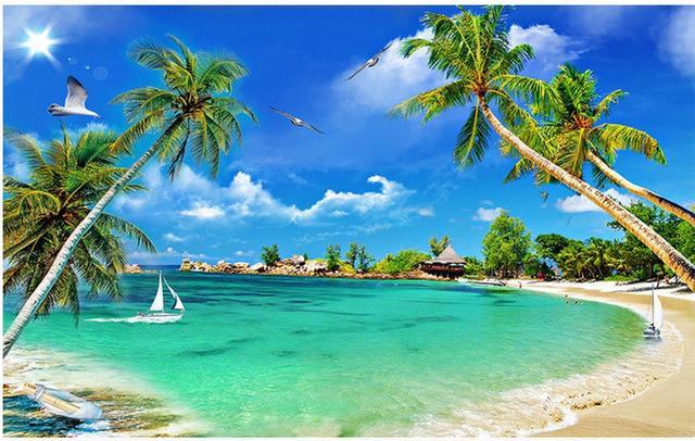 Hd Coconut Tree Seaside Landscape Nature Wallpaper Living