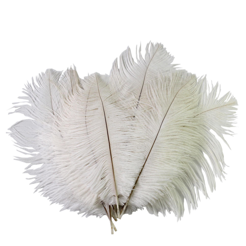 White craft feathers bulk - White Craft Feathers Bulk Wedding Diy Crafts Decorations Natural 10pcs 6 8 Inch White Ostrich Download