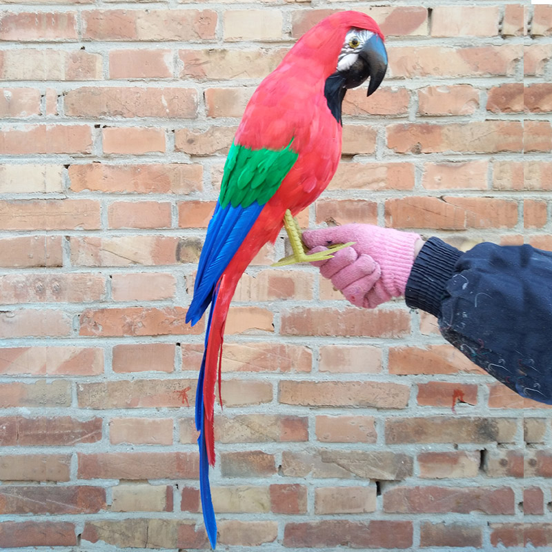 new simulation red parrot toy polyethylene&furs big parrot model gift about 60cm 0061