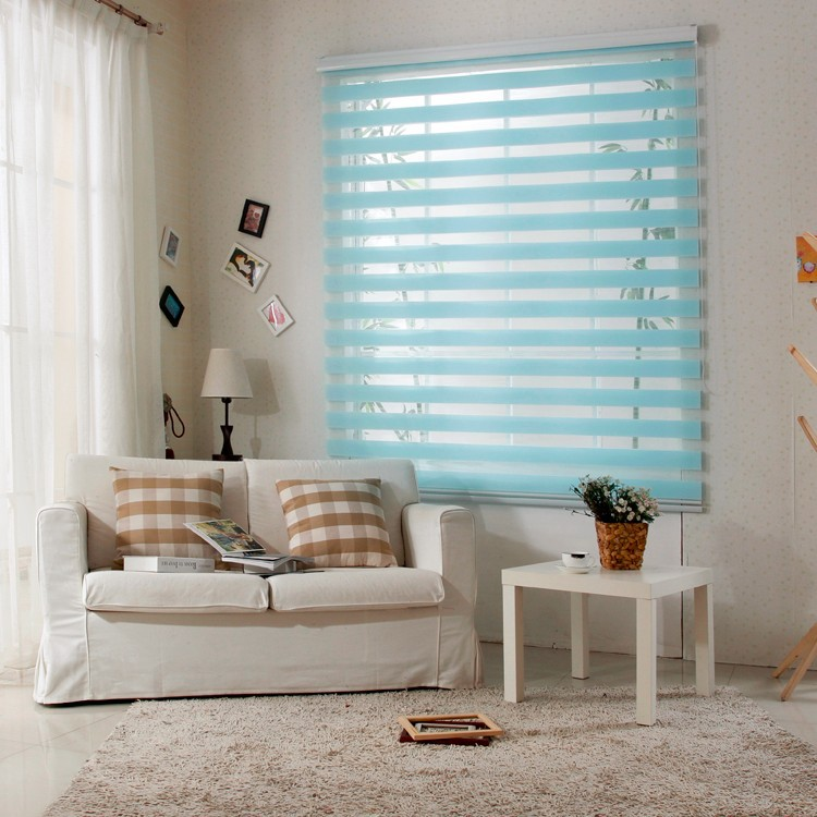 Free Shipping Popular Zebra Blinds Double Layer Roller For Room Window Customized SizeChina