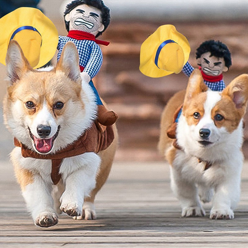 Funny Pet Cat Dog Costumes Dog Apparel Clothes For Halloween Cosplay Western Cowboy Riding Costumes Jacket Cloak Dog Accessories2