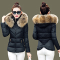 New Wadded Winter Jacket Women Large Fur Collar Cotton Short Jacket Fashion 2016 Girls Padded Plus Size Hooded Parkas Coats w212