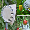 New High Quality Metal Garden Tools Fruit picker Convenient Horticultural Fruit Picker Gardening Apple Peach Picking Tools discount