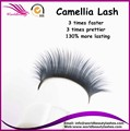 Russian/Camellia volume lash extension 0.07mm 7-9mm in one line 1tray/lot, Lucid Concision Packing Lash Box