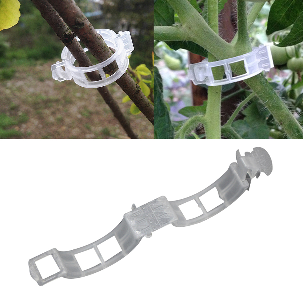 Vine-Peppers-Support-Clips Hanging Plant-Types Garden-Plant Vegetables Plastic For 50pcs