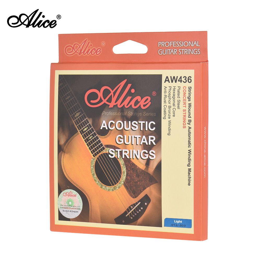 dd 6pcs Accessory for acoustic guitar one set strings