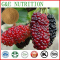 Pure natural dietary supplement Mulberry fruit extract 600g