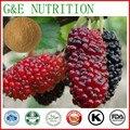 Suplemento dietético natural puro Mulberry extracto de fruta 600g