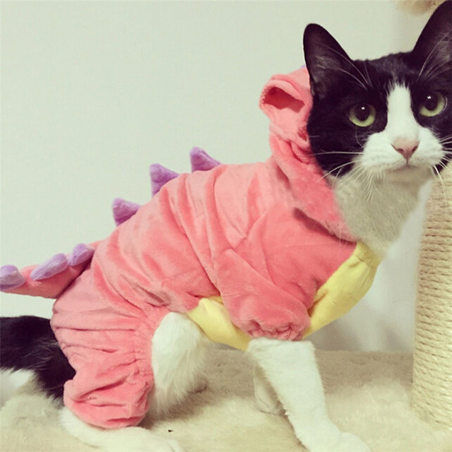 Pet Plush Outfit Dinosaur Costume with Hood for Small Dogs u0026 Cats Jumpsuit Winter Coat Warm & Pet Plush Outfit Dinosaur Costume with Hood for Small Dogs u0026 Cats ...