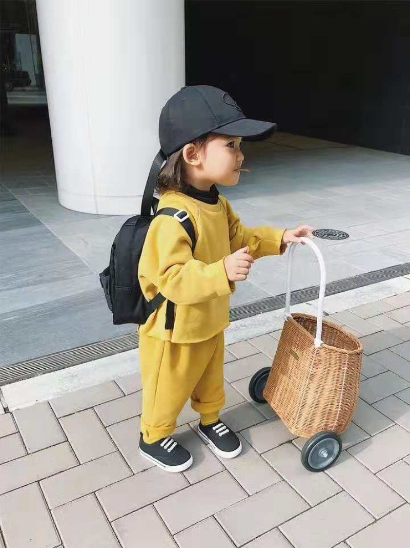 House-Toy Rattan-Stroller Garden-Cart Shooting-Props Pretend-Play-Toys Room-Decoration