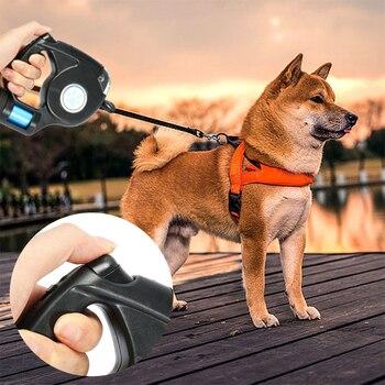 Correa extensible retráctil con linterna y bolsa de basura para perros