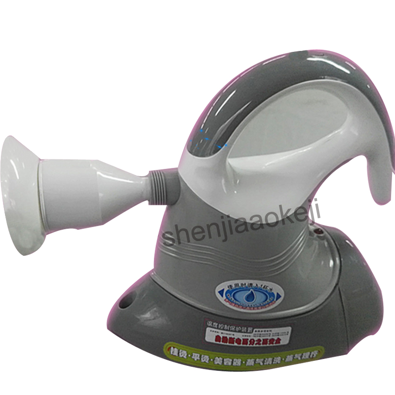 DWF A8 Hand held Steam Iron Brush Cleaner perm machine Household Steaming cleaning machine Steamer Face 220v 750W 1pc