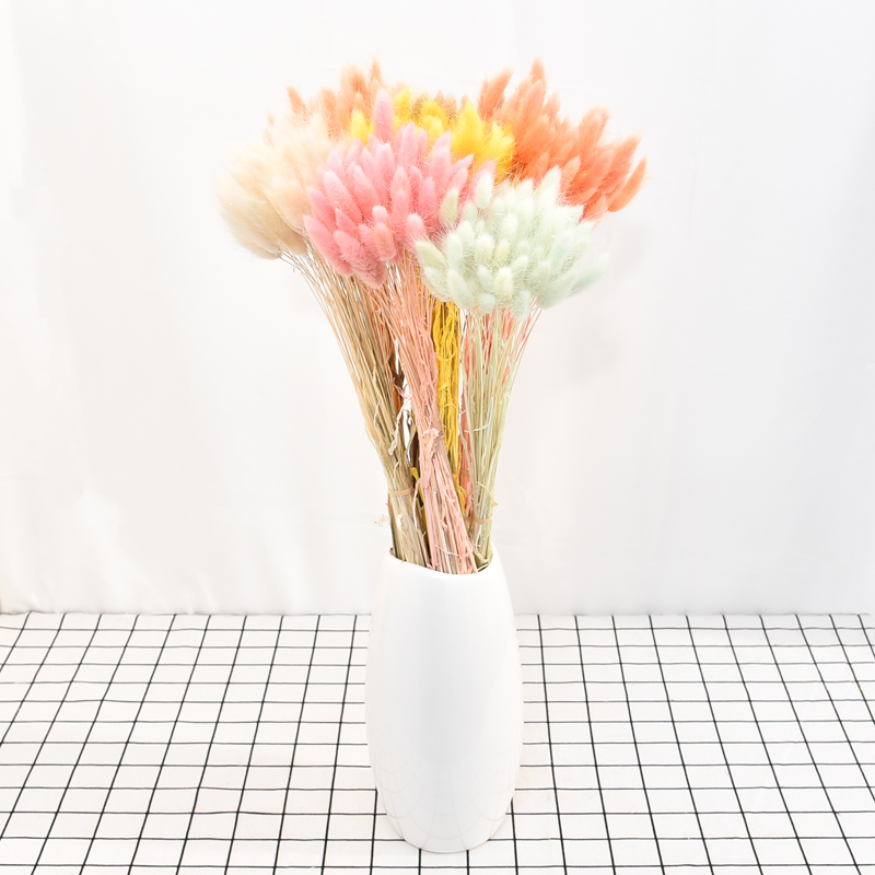 Festive & Party Supplies 50pcs Bunch Dried Flowers Natural Rabbit Tail Fake Grass Dried Flower Artificial Plants Flowers Home Decoration Photography Prop Artificial & Dried Flowers