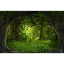 Yeele Light of Hope Forest Romantic Wonderland Girl Photography Backgrounds Personalized Photographic Backdrops For Photo Studio