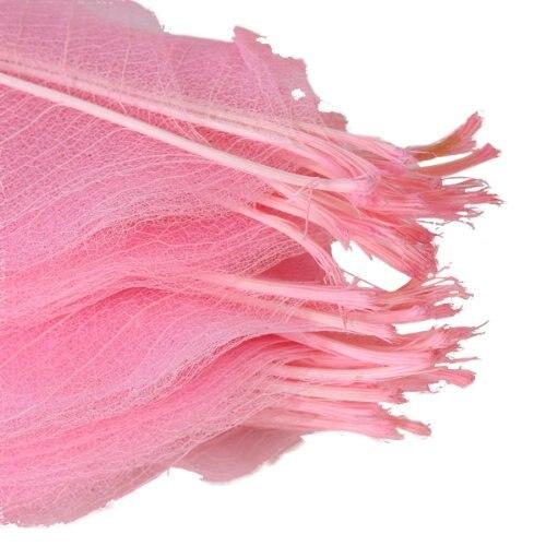 BLEL Hot 50Pcs Natural Cat Brier Skeleton Leaf Leaves Card Scrapbook - Pink