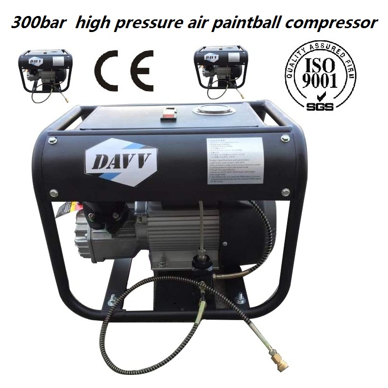 220V50HZ 300BAR 30MPA 4500PSI High Pressure Air Pump water