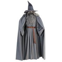 Lord Of The Rings Gandalf Wizard Cosplay Halloween Costume Custom with hat wig beard