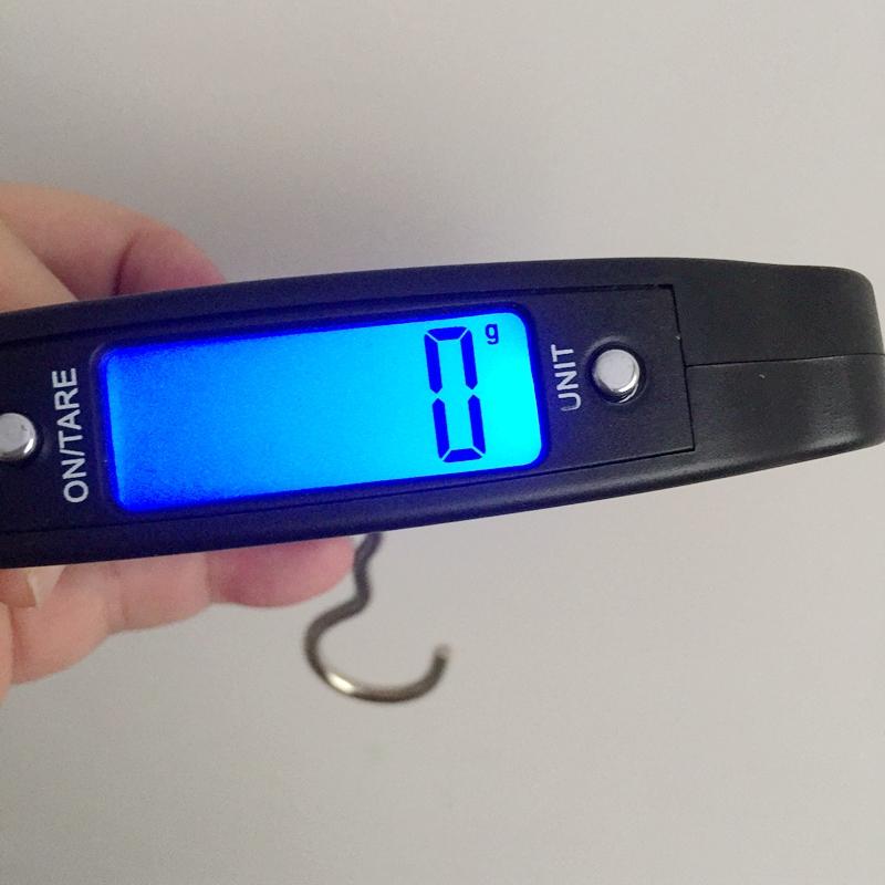 50kg 10g handheld luggage suitcase fishing hook scale for Best digital fish scale