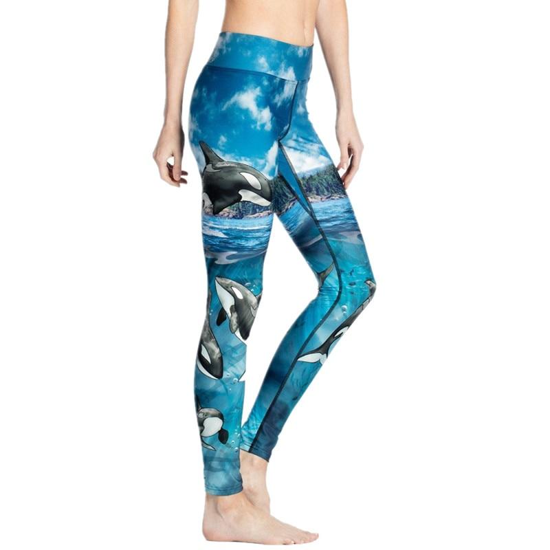 Orcinus Orca Prined Yoga Pants Workout Gym Leggings XXXL
