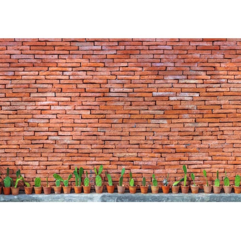Begeistert Laeacco Alte Backstein Wand Schiefer Stein Gestapelt Topfpflanzen Kaktus Baby Portrait Fotografie Kulissen Fotografischen Hintergründe Foto Studio