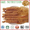 500 mg x 500 pcs Natural Coréia Do ginseng vermelho/Coréia Radix Ginseng Cápsula com frete grátis