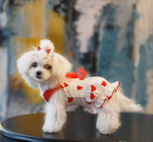 New Korean version of pet clothes, spring and summer skirt, dog, cat, Princess dress