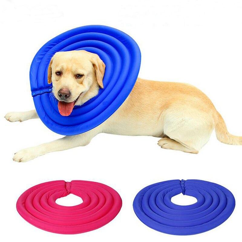 Foam Dog Collar