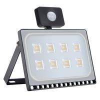 https://i0.wp.com/ae01.alicdn.com/kf/HTB1IXxLxbSYBuNjSspfq6AZCpXaO/5-ช-น-ล-อต-Ultrathin-110-V-220-V-50-W-Led-Floodlight-โคมไฟกลางแจ-ง.jpg