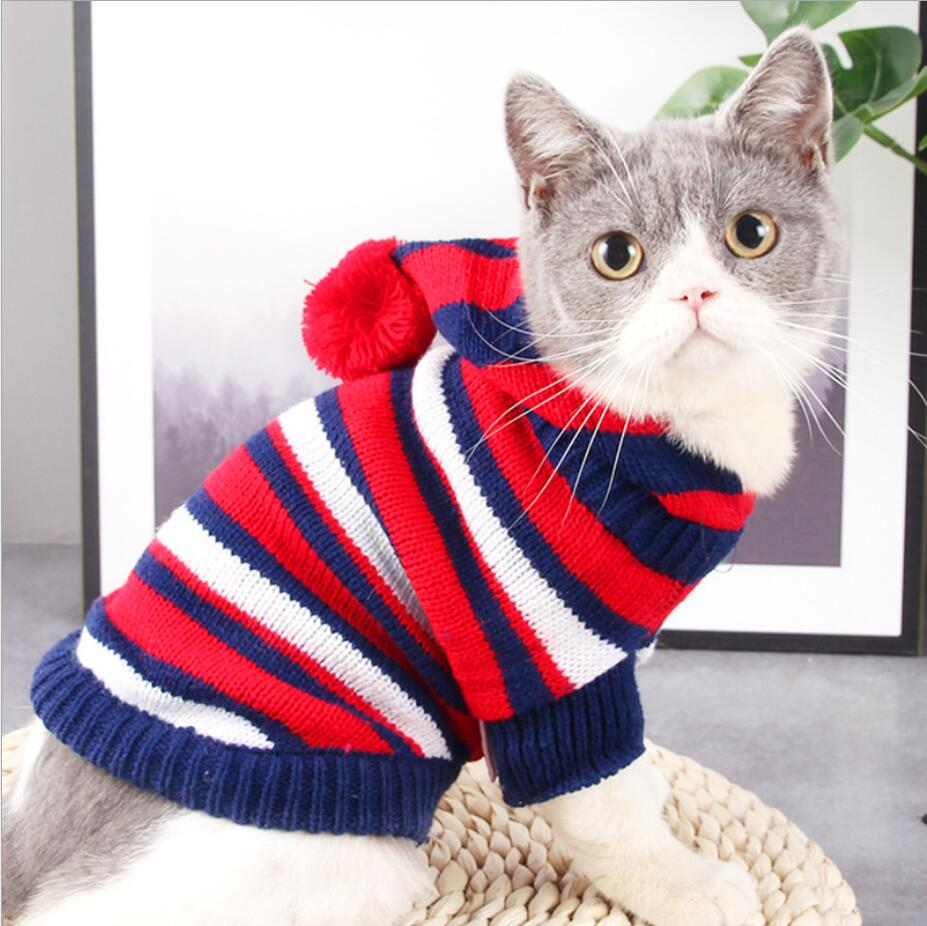вязаная одежда для кошек фото вам хочется хорошо