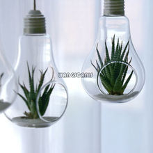 1X Clear Plant Hanging Vase Hanging Glass Flowers Plant Vase Terrarium Container Home Garden Ball Decors